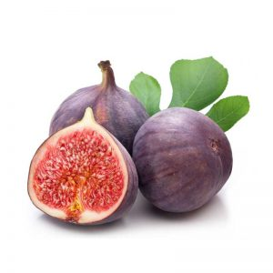 Anjeer, Common-fig Plant-1