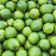 Kagzi-Nimboo,-Kagzi-Lemon–Plant-3