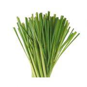 Lemon-grass-1