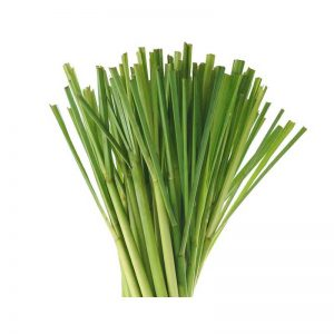 Lemon-grass-1