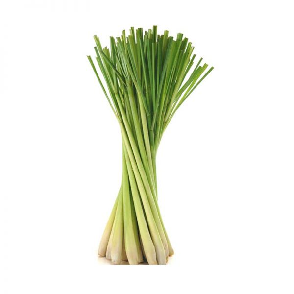 Lemon-grass-2